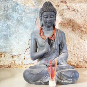Start Vandaag met Yoga in Haarlem